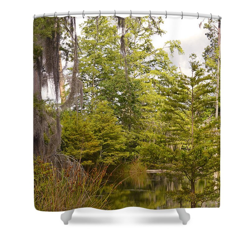 Green Shower Curtain featuring the photograph Beauty In A Swamp Ll by Leticia Latocki