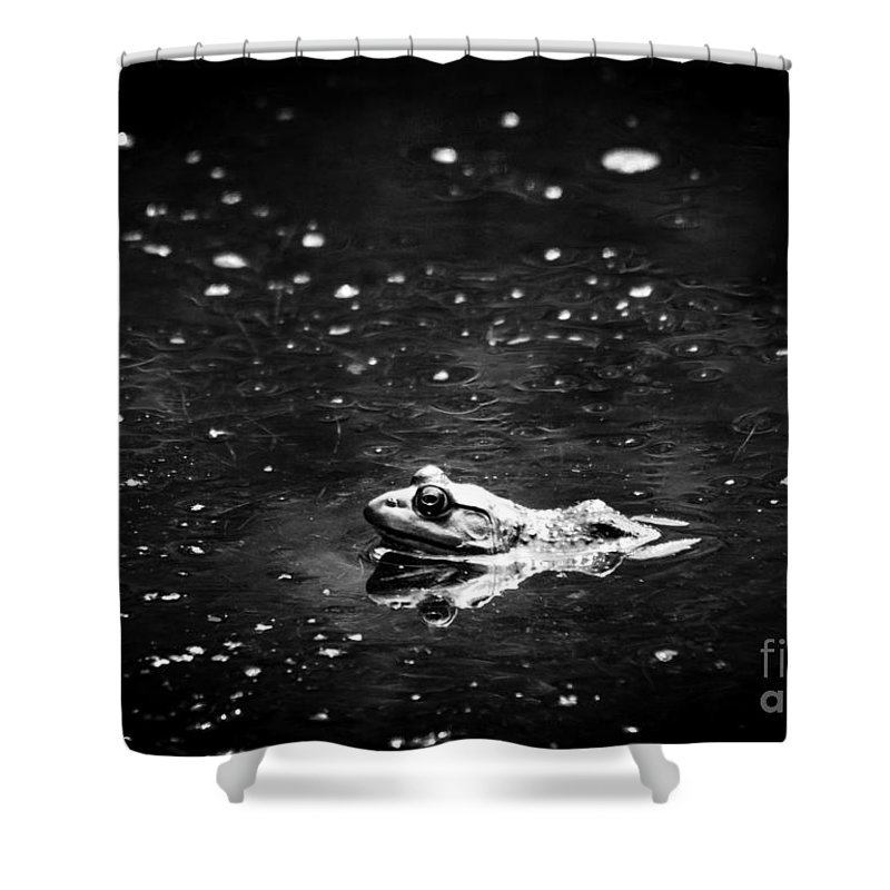 Frog Shower Curtain featuring the photograph Being Green In Black And White by Cheryl Baxter