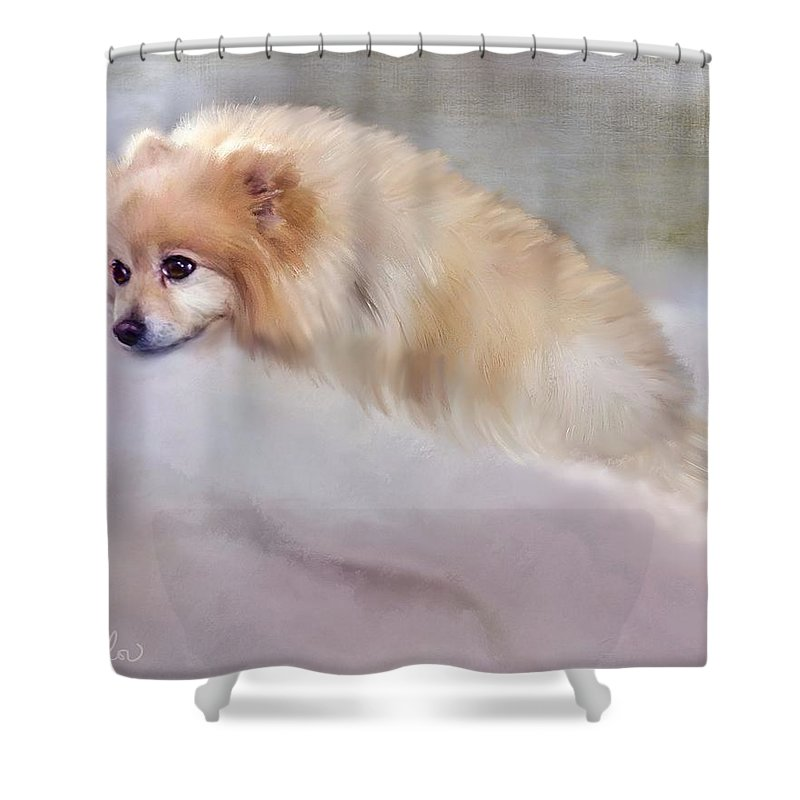 Dogs Shower Curtain featuring the painting Bella Boo by Colleen Taylor