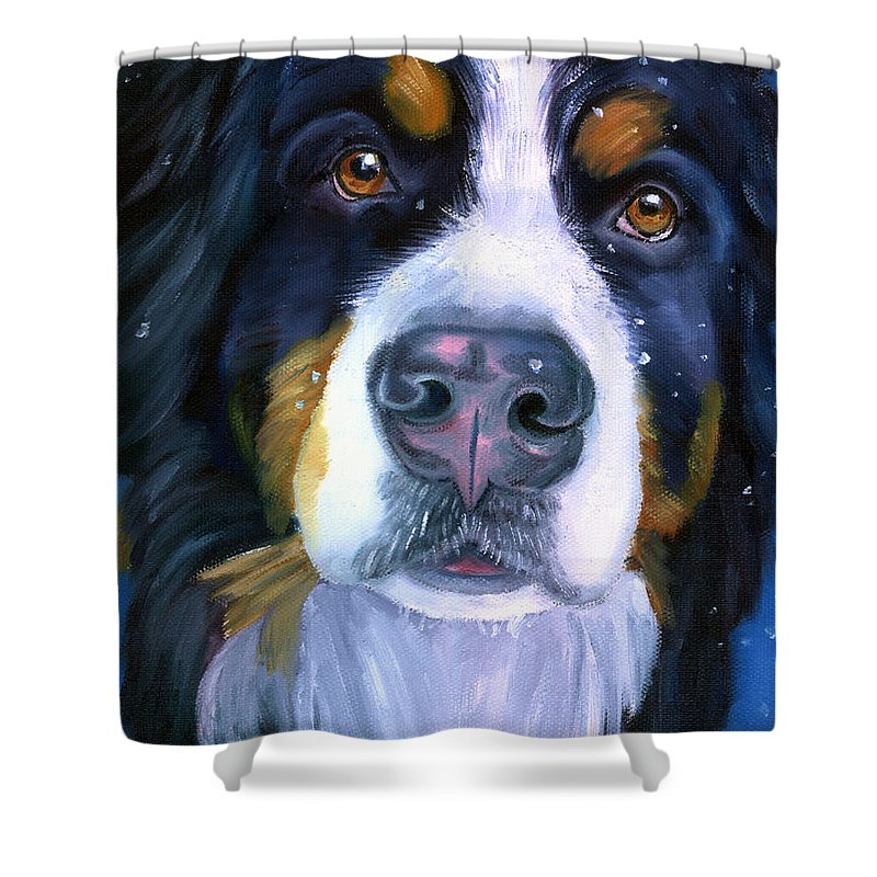 Bernese Mountain Dog  Shower Curtains