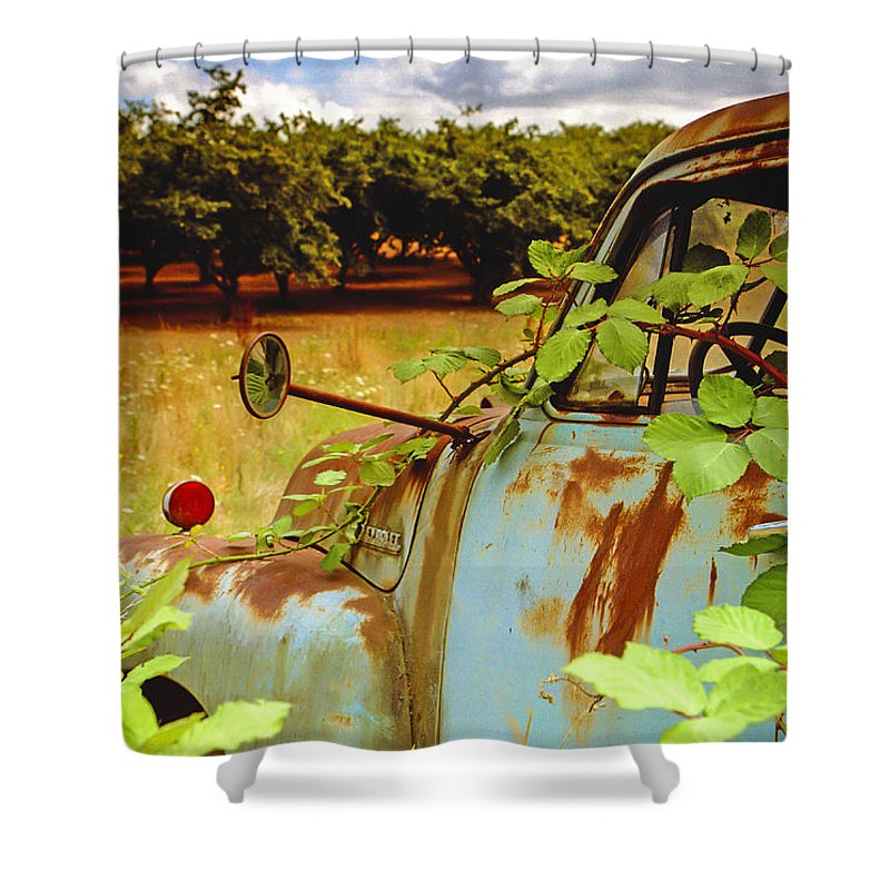 Jean Noren Shower Curtain featuring the photograph Berry Old Truck 2 by Jean Noren