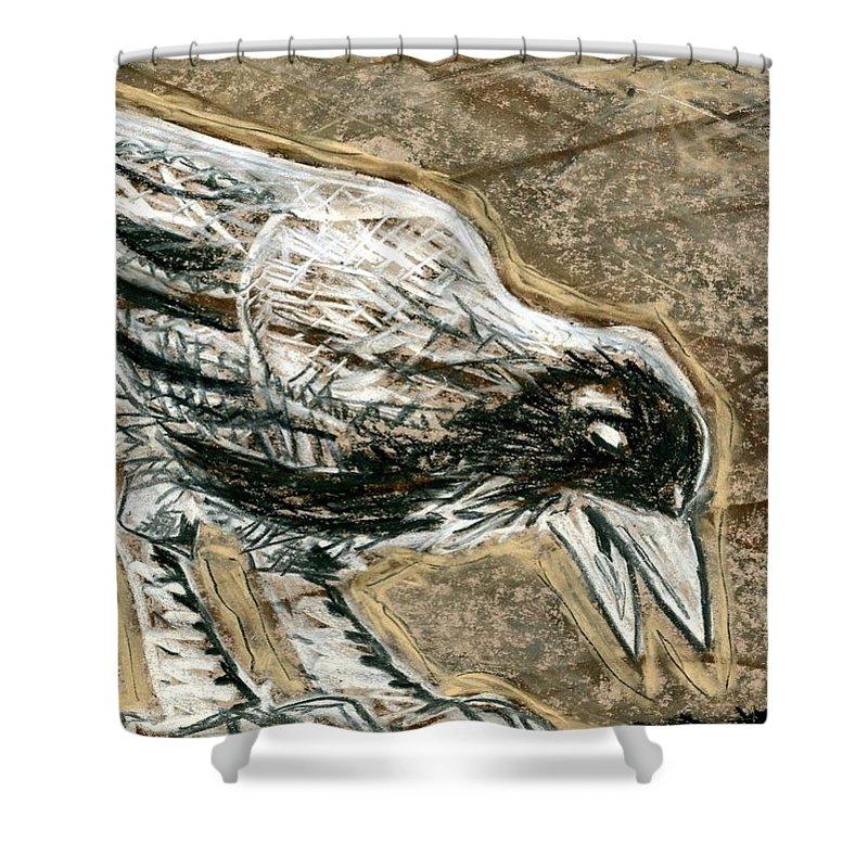Bird Shower Curtain featuring the drawing Bird 3 by Matthew Howard