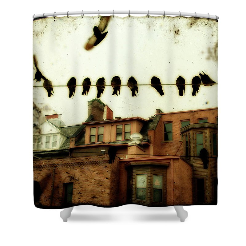 Earthy Tones Shower Curtain featuring the photograph Bird Cityscape by Gothicrow Images