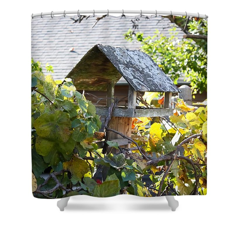 Bird Feeder Amongest The Grapevines Shower Curtain featuring the photograph Bird Feeder Amongest The Grapevines by Cynthia Woods