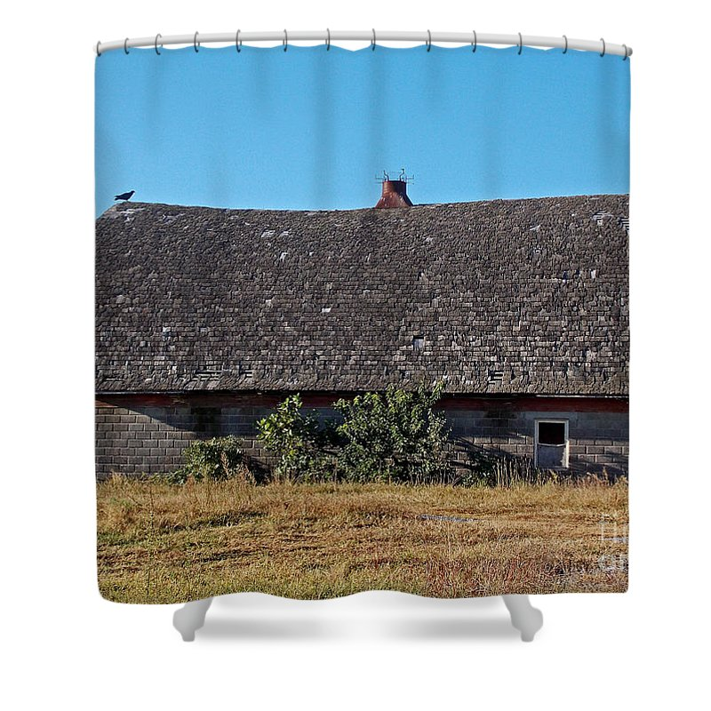 Scenic Tours Shower Curtain featuring the photograph Bird Of Death by Skip Willits