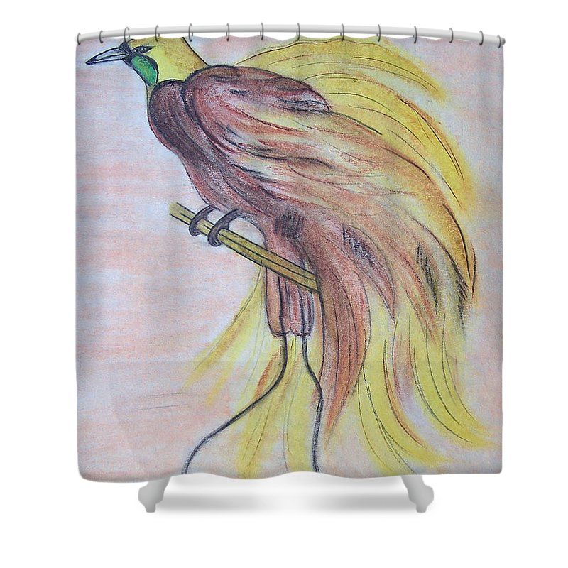Bird Shower Curtain Featuring The Drawing Of Paradise By Susan Turner Soulis