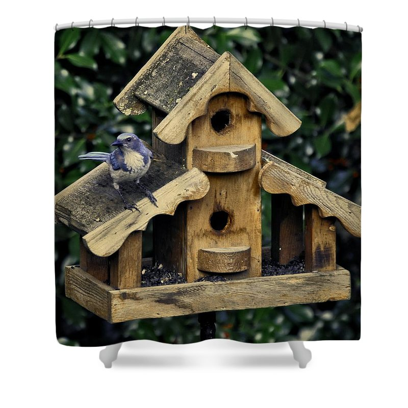 Oregon City Shower Curtain featuring the photograph Bird On A House by Image Takers Photography LLC - Carol Haddon
