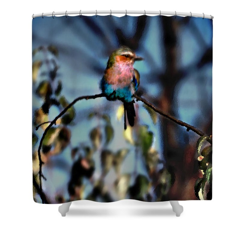 Nature Shower Curtain featuring the photograph Bird on a limb by Steve Karol