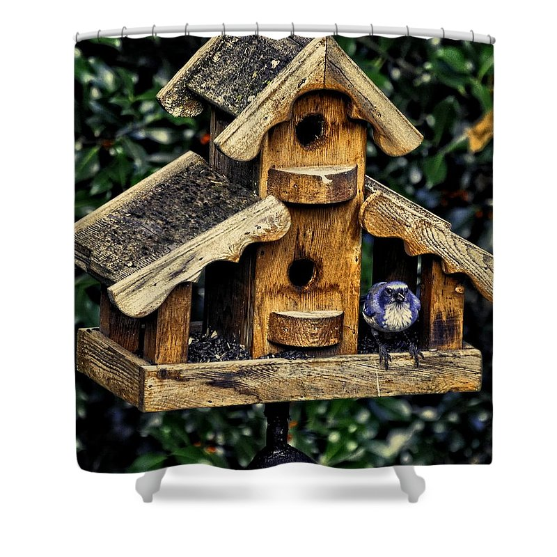 Oregon City Shower Curtain featuring the photograph Birds In Oregon by Image Takers Photography LLC - Carol Haddon