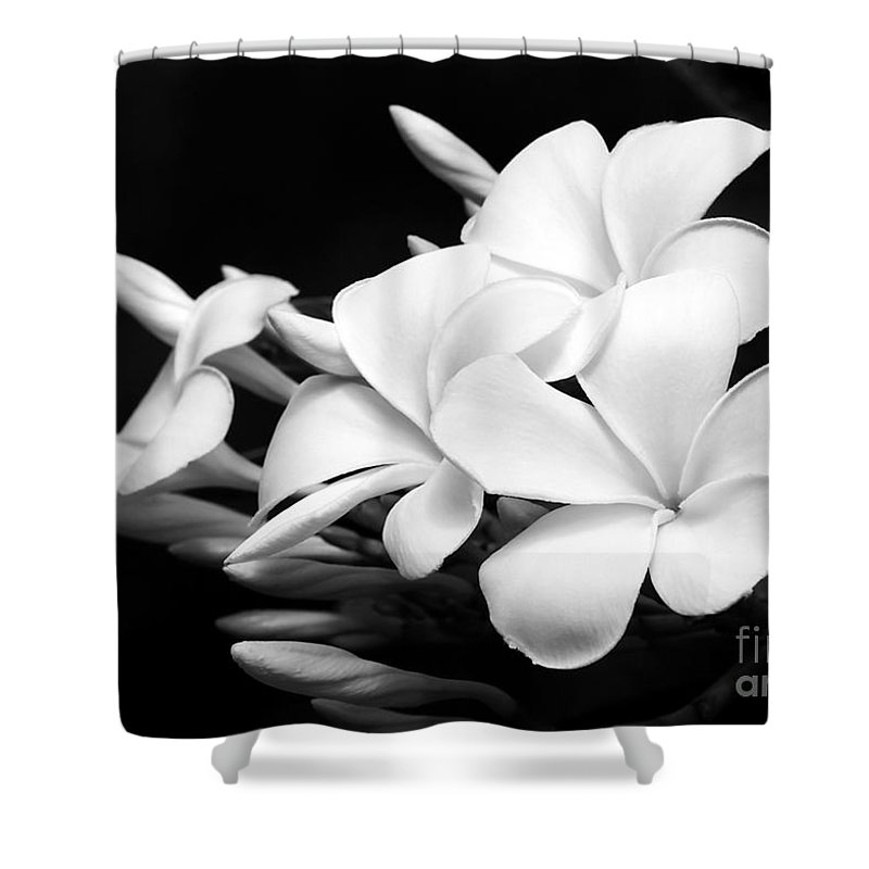 Macro Shower Curtain featuring the photograph Black And White Lightning by Sabrina L Ryan