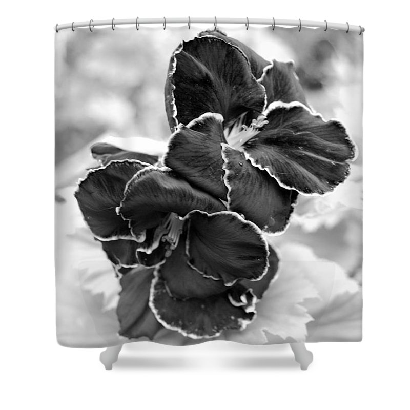 Kula Botanical Gardens Shower Curtain featuring the photograph Black And White Maui Flowers by Amy Fose