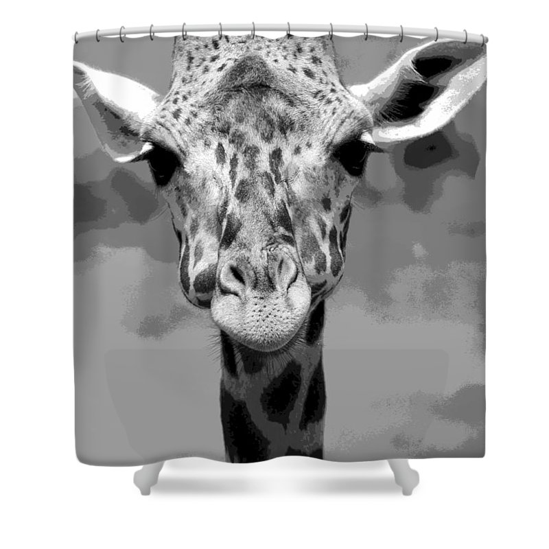 Giraffe Peek A Boo Poster Shower Curtain featuring the mixed media Black And White Peek A Boo Giraffe by Dan Sproul