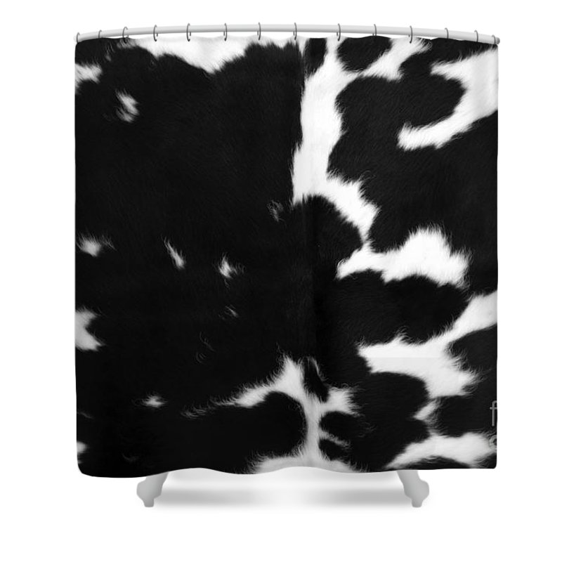 Abstract Shower Curtain Featuring The Photograph Black Cowhide By Gunter Nezhoda