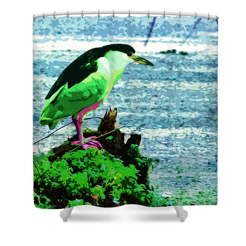Heron Shower Curtain featuring the digital art Black Crowned Green Night Heron by Norman Johnson