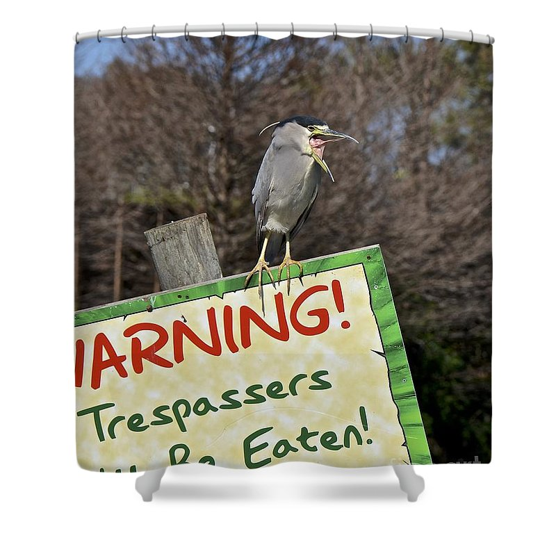 Heron Shower Curtain featuring the photograph Black-crowned Night Heron by Carol Bradley