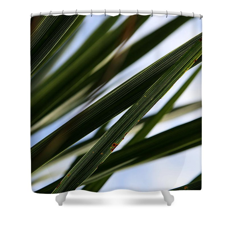 Green Shower Curtain featuring the photograph Blades Of Grass by Neal Eslinger