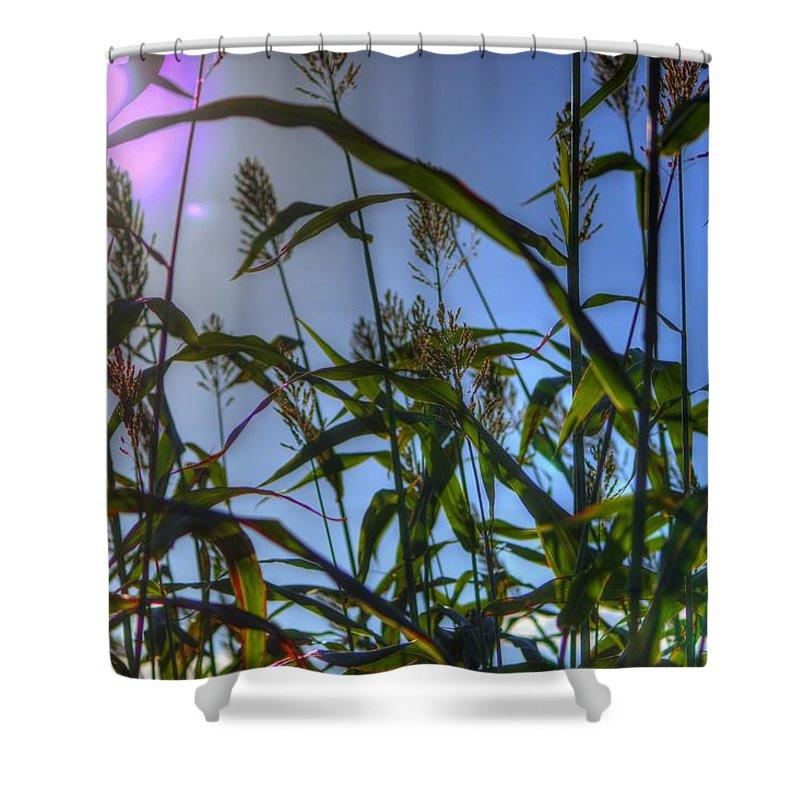Sun Burst Shower Curtain featuring the photograph Blazing Rays by Tyson Kinnison
