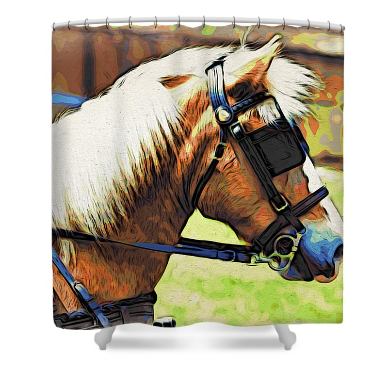 Horse In Blinders Shower Curtain featuring the photograph Blinders by Alice Gipson