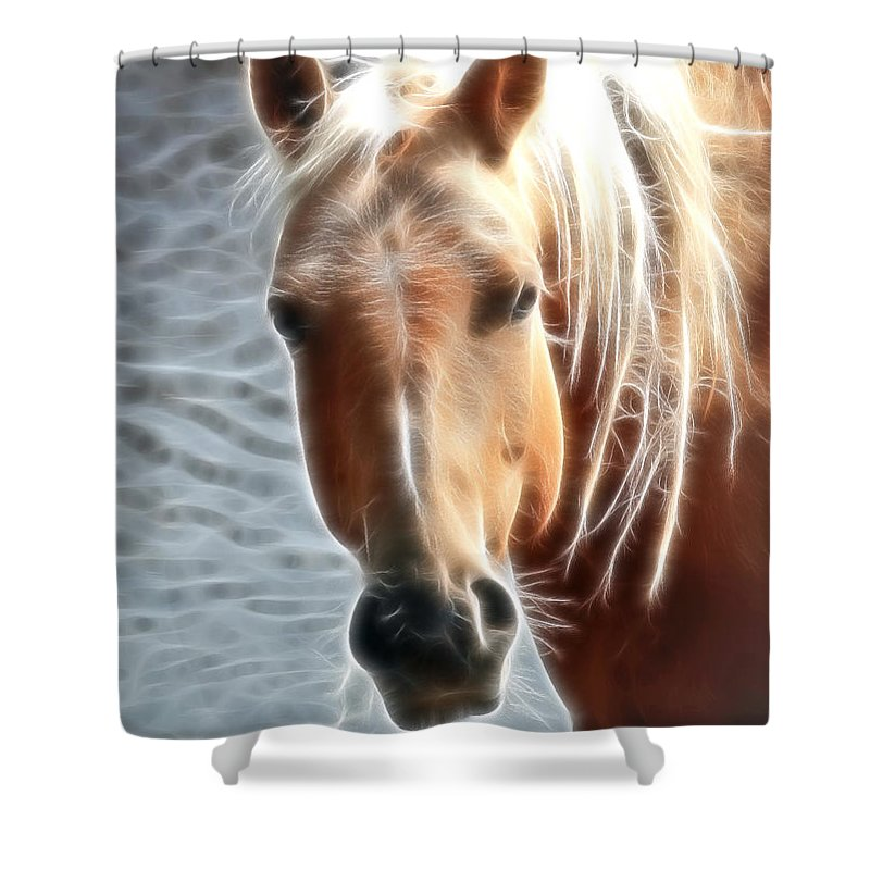 Horses Shower Curtain featuring the photograph Blonde Strands by Athena Mckinzie
