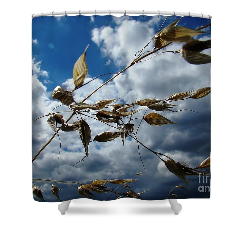 Blowing Shower Curtain featuring the photograph Blowin' In The Wind by Brothers Beerens
