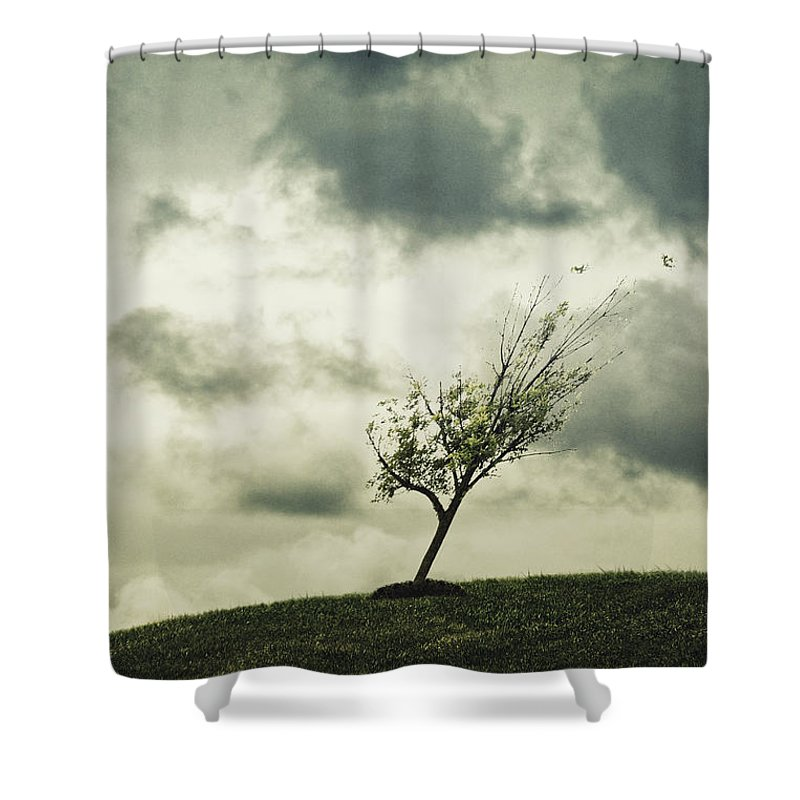 Tree Shower Curtain featuring the photograph Blowing by Margie Hurwich