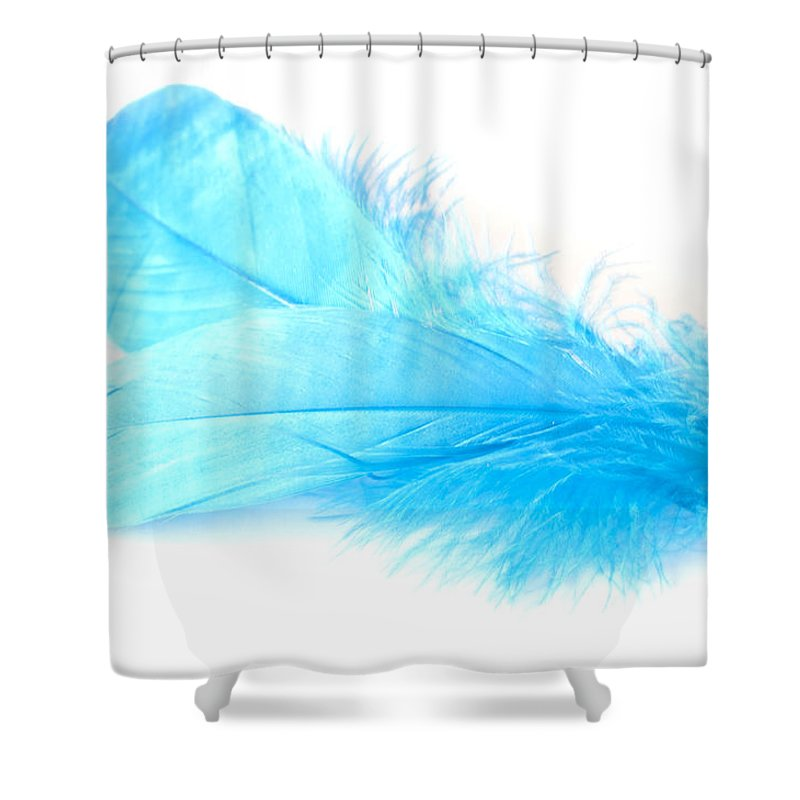 Blue Goose Shower Curtain featuring the photograph Blue Doubles by Steve Purnell