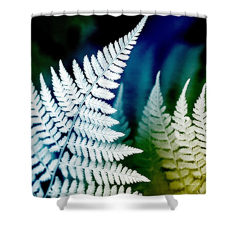Fern Shower Curtain featuring the photograph Blue Fern Leaf Art by Christina Rollo