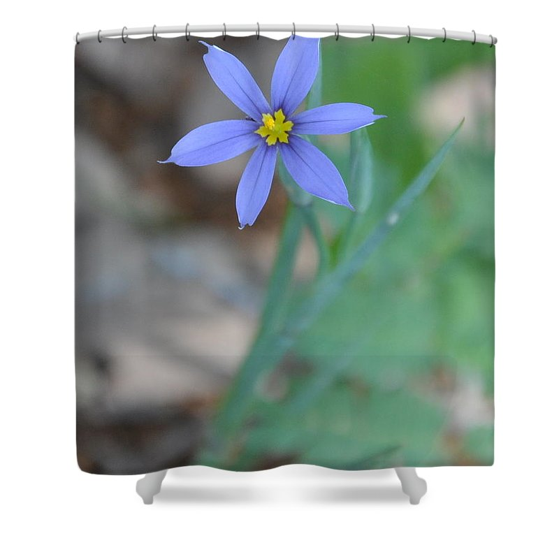 Blue Shower Curtain featuring the photograph Blue Flower by Frank Madia