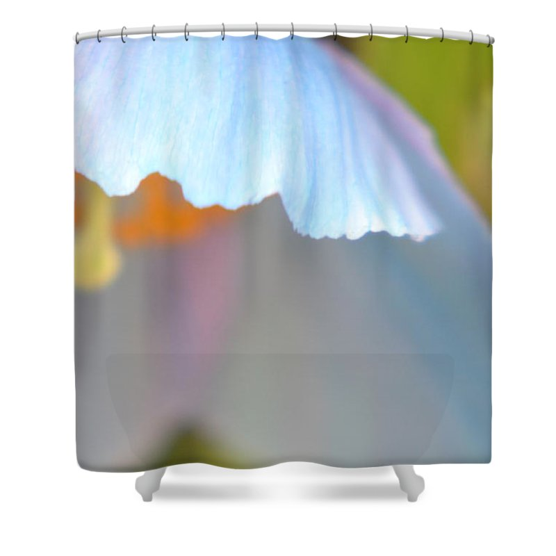 Blue Shower Curtain featuring the photograph Blue Poppy 8 by Heather Jane