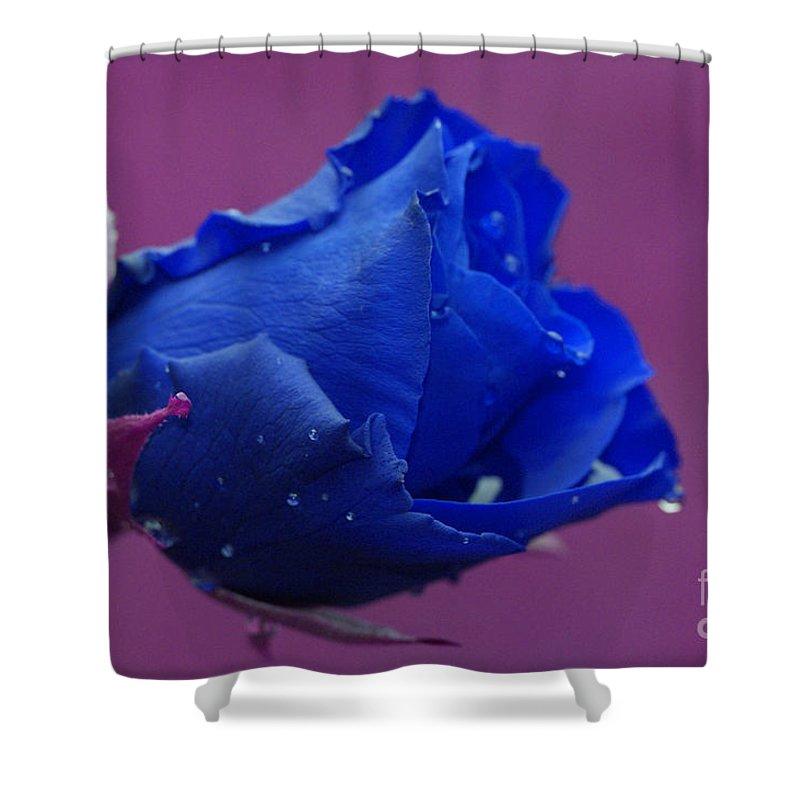 Blue Shower Curtain featuring the digital art Blue Rose by Carol Lynch