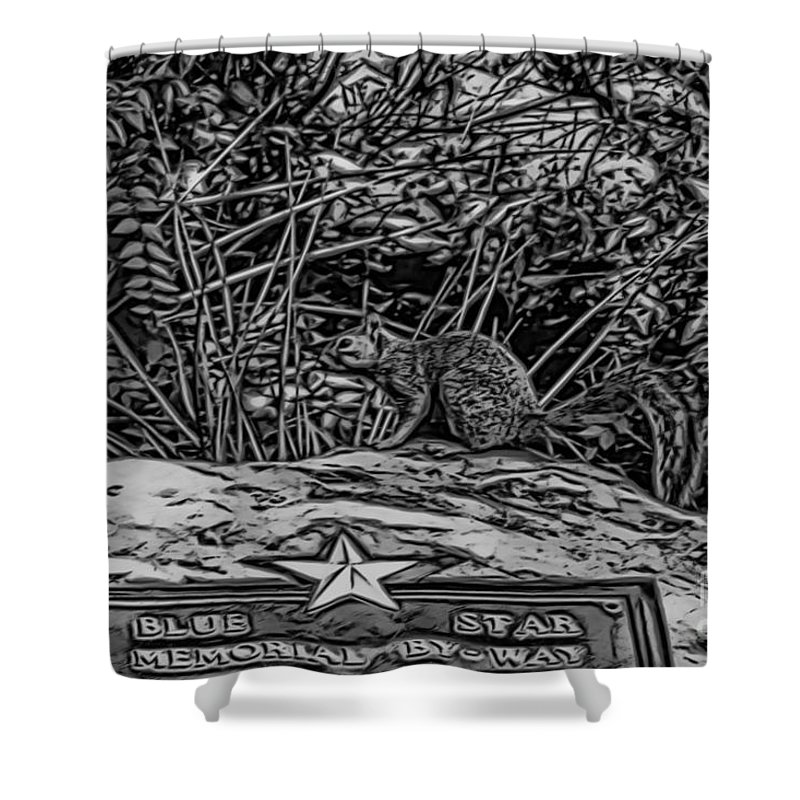 Squirrel Shower Curtain featuring the photograph Blue Star Visitor by Douglas Barnard