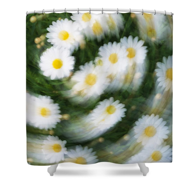 Daisy Shower Curtain featuring the photograph Blurred Daisies by Chevy Fleet