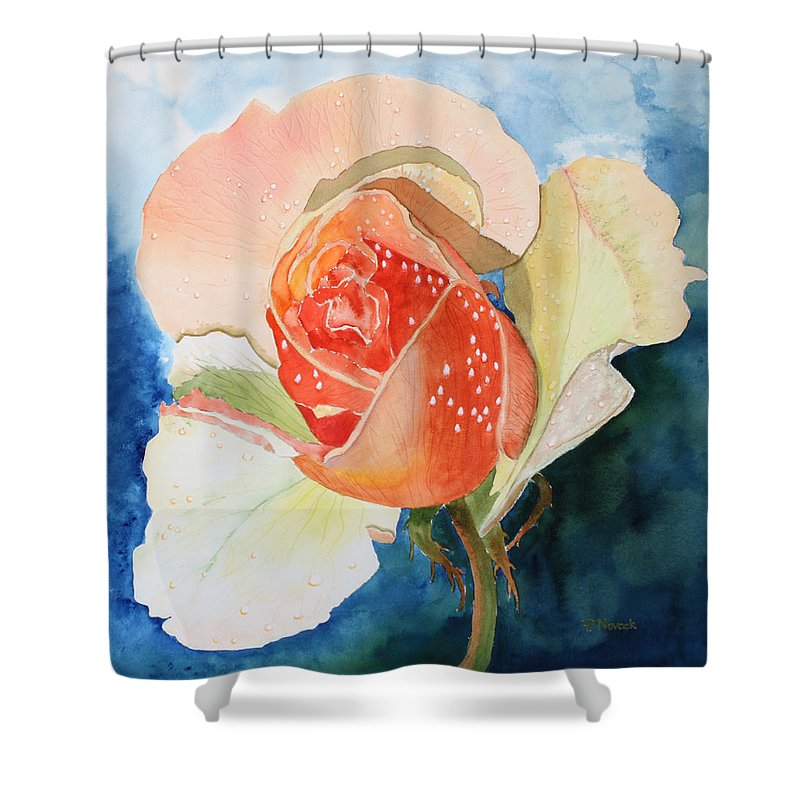Rose Shower Curtain featuring the painting Blushing Bloom by Patricia Novack