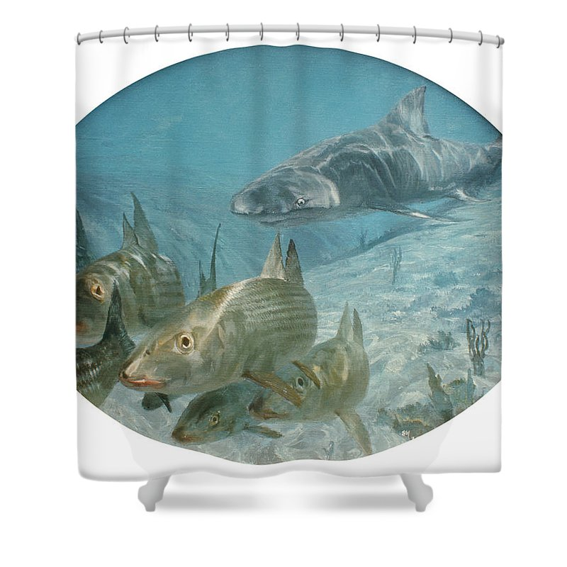 Color Image Shower Curtain featuring the photograph Bonefish Pursued By A Shark, 1972 by Stanley Meltzoff / Silverfish Press