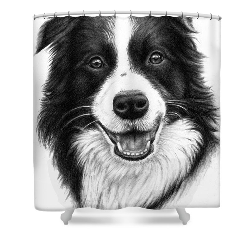 Dog Shower Curtain featuring the drawing Border Collie by Nicole Zeug