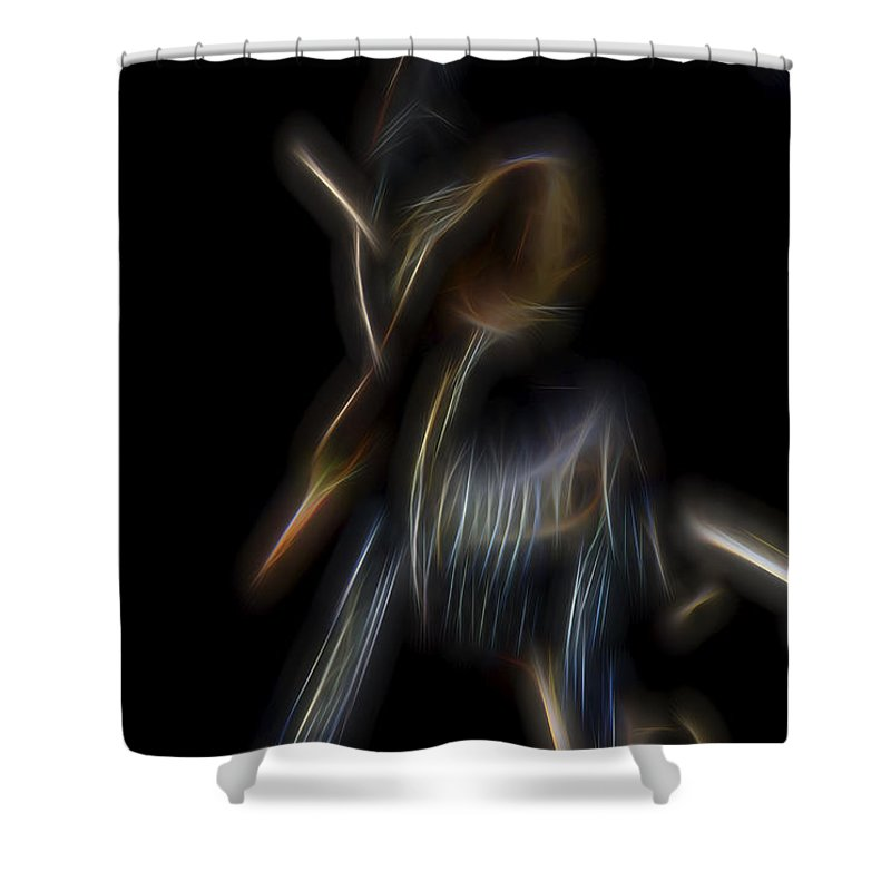 Anhinga Shower Curtain featuring the digital art Bowing To The Sun by William Horden