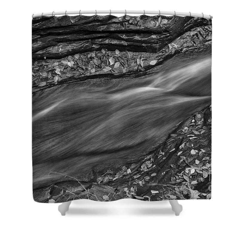 Michele Shower Curtain featuring the photograph Braided Water by Michele Steffey