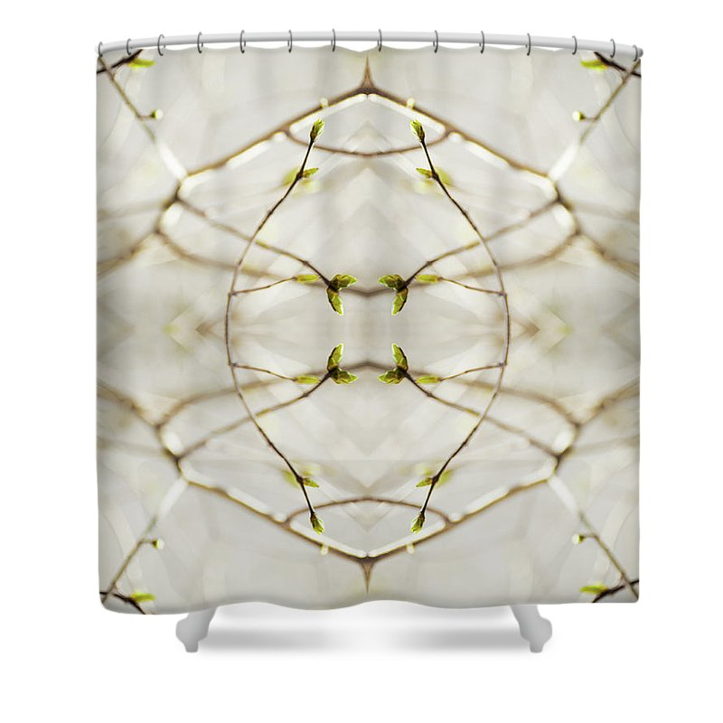 Fragility Shower Curtain featuring the photograph Branches And Buds Of Syringa Tree by Silvia Otte