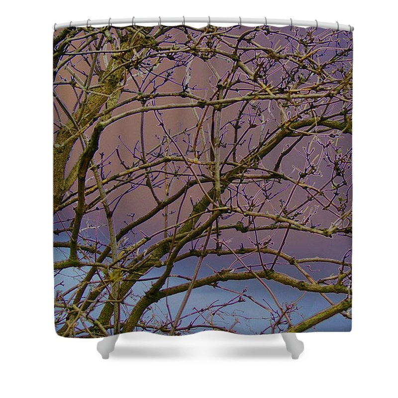 Branches Shower Curtain featuring the digital art Branches by Carol Lynch
