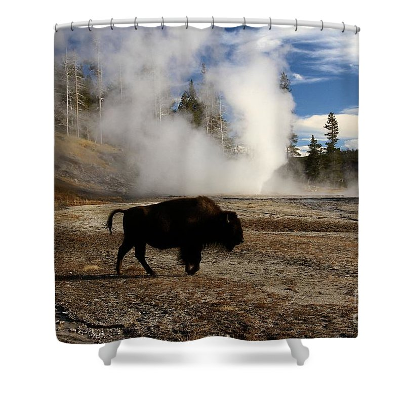 Vent Geyser Shower Curtain featuring the photograph Breaking The Rules by Adam Jewell