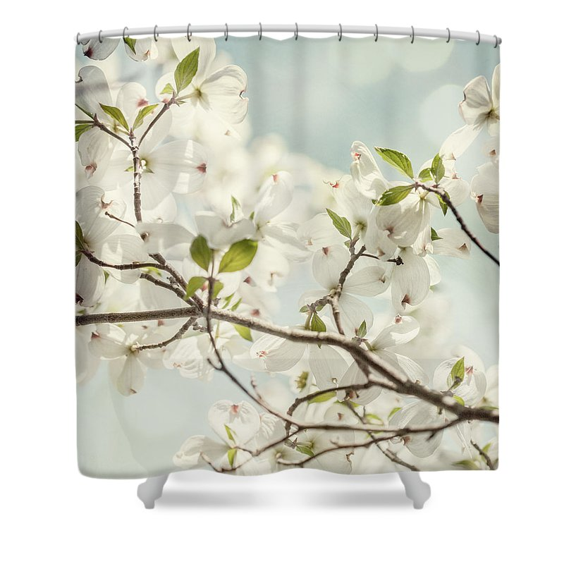White Flowers Shower Curtain Featuring The Photograph Bright Dogwood Against A Pastel Blue Sky
