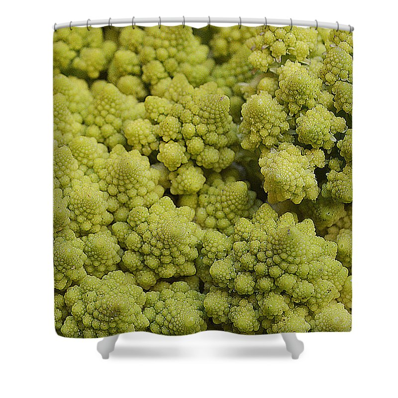 Vegetable Shower Curtain featuring the photograph Broccoli Heirloom by Felicia Tica