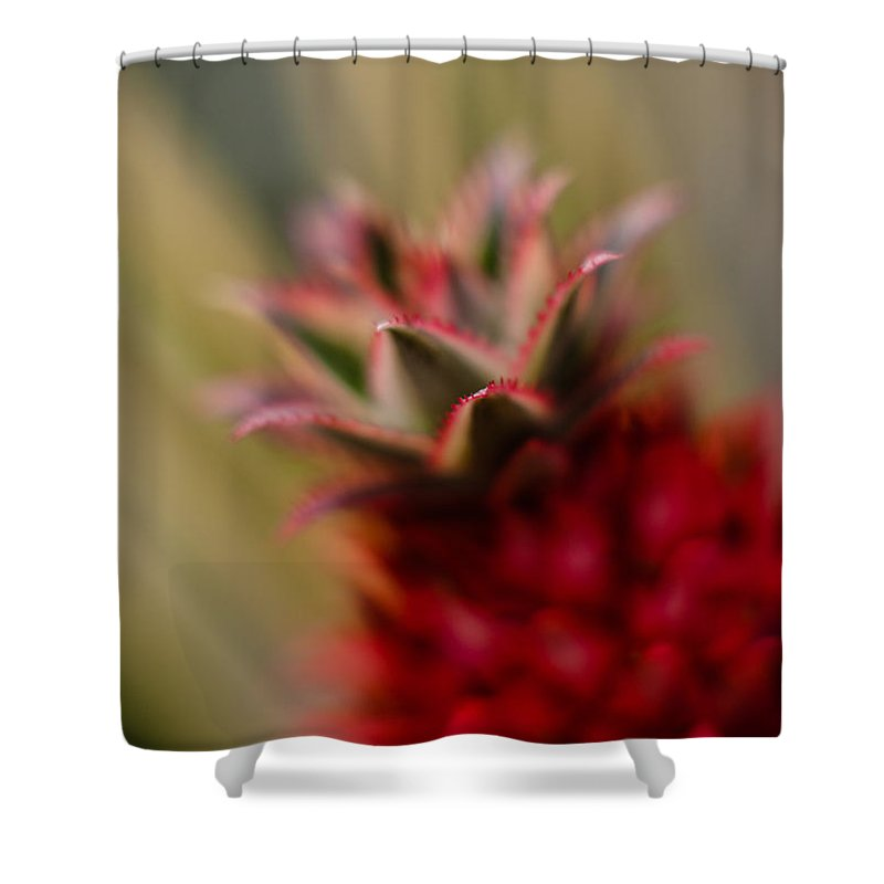 Flower Shower Curtain featuring the photograph Bromeliad Crown by Mike Reid