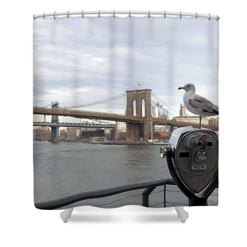 Lower Manhattan Shower Curtain featuring the photograph Brooklyn Bridge by Kevinjeon00