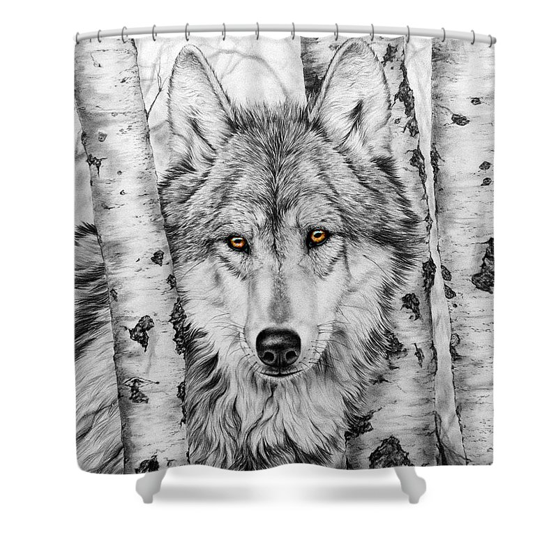Wolf Shower Curtain featuring the painting Brother Wolf by Donna Hillman Walsh