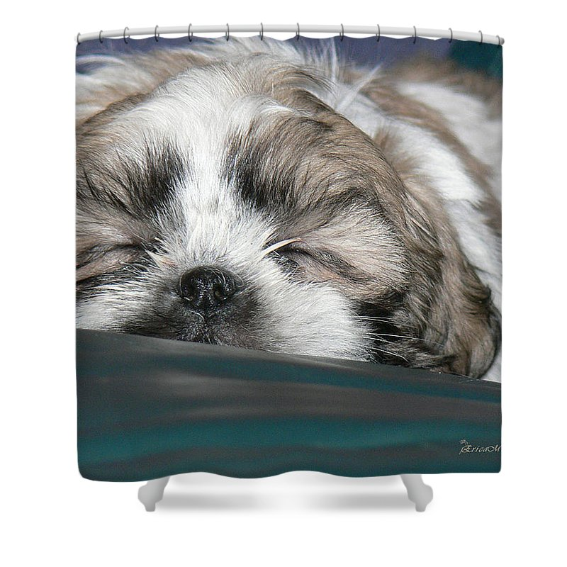 Bubba Shower Curtain featuring the photograph Bubba by Ericamaxine Price