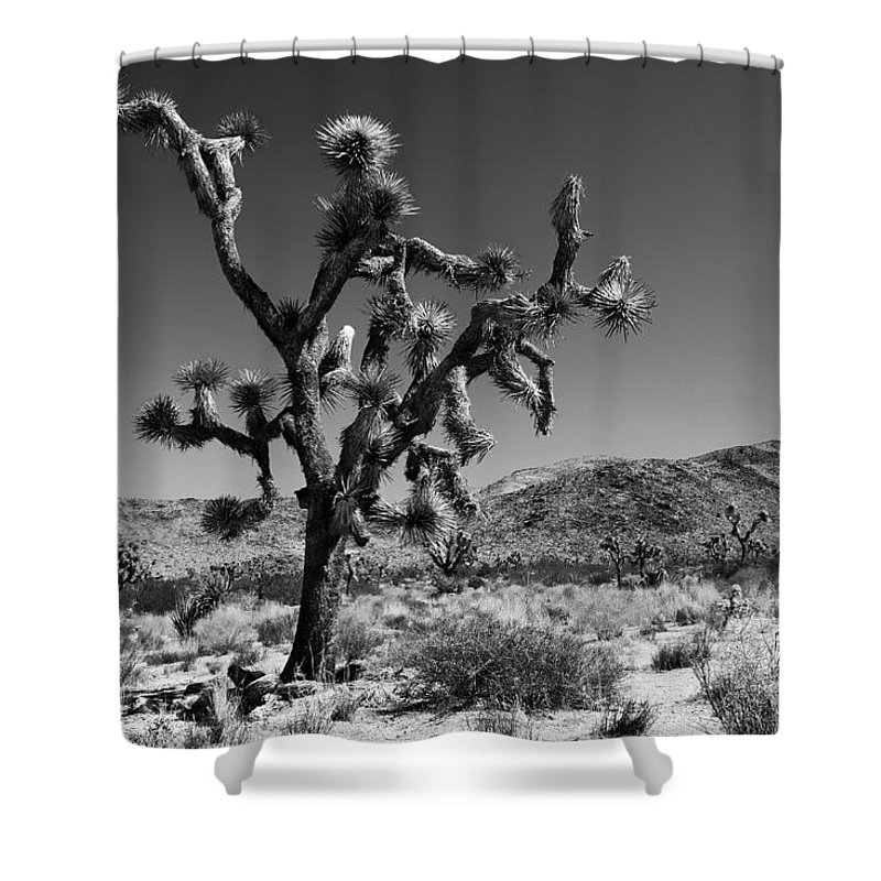 America Shower Curtain Featuring The Photograph Bullet Blue Sky