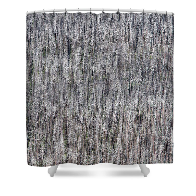 North America Shower Curtain featuring the photograph Burnt Trees Abstract by Max Waugh
