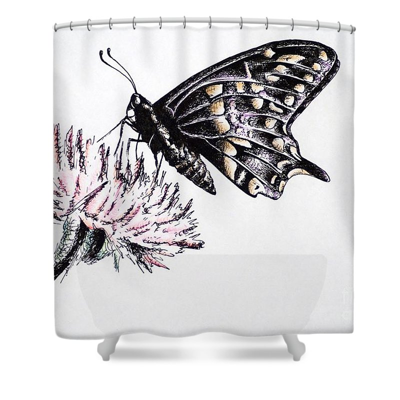Butterfly Shower Curtain featuring the drawing Butterfly by Katharina Filus