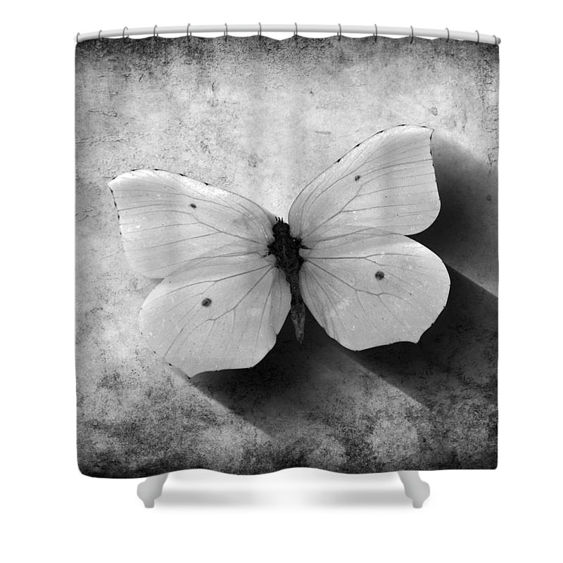 Butterfly Shower Curtain featuring the digital art Butterfly 4 by Steve Ball